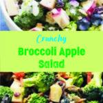 Crunchy Broccoli Apple Salad